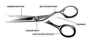 как выбрать ножницы